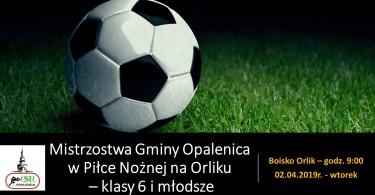 Mistrzostwa Gminy Opalenica