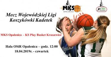 Mecz Wojewódzkiej Ligi Koszykówki Kadetek
