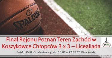 Finał Rejonu Poznań Teren Zachód w Koszykówce Chłopców
