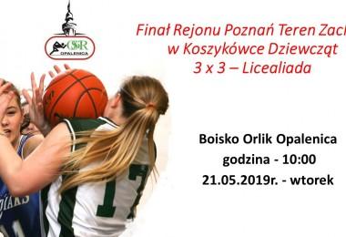 Finał Rejonu Poznań Teren Zachód w Koszykówce Dziewcząt